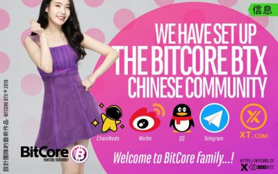 BitCore BTX Chinese Community / Bitcore社群成员你们好